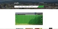 Webless - Slika prikazuje začetno stran Profildoo.s